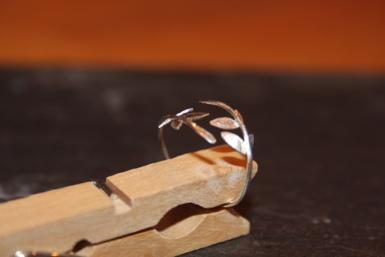 Silber-Ring Blätter 925/-